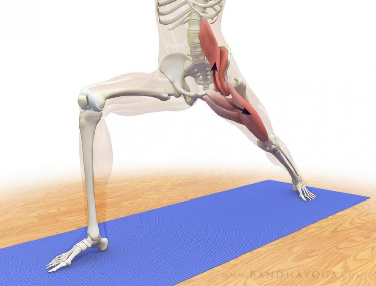 warrior1_psoas_stretch